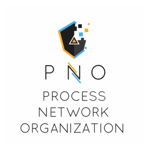 ProcessNetworkOrganizationSrl