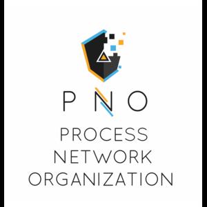 ProcessNetworkOrganizationSrl