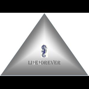 liFeForever